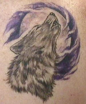 Wolf Face Tattoo | The One In Which I Almost Get Murdered.... Twice... At Least I'm ...