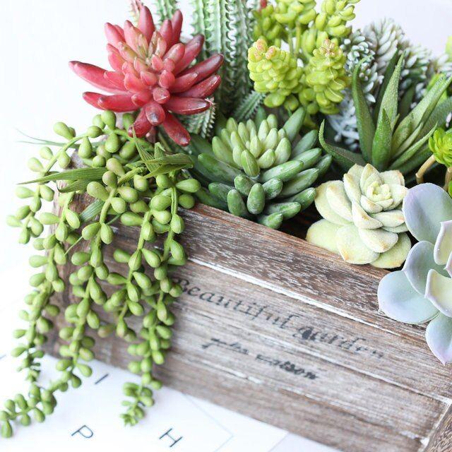 Succulent Plants Artificial Decors Various Landscape Flowers Garden Arrangements