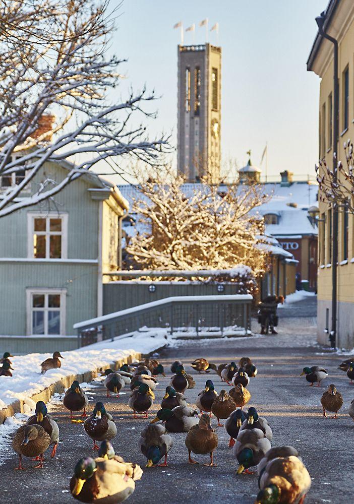 150123-140, vinter i Västerås, Slottsgatan, Stadshustornet