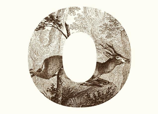 """""""O Deer"""" - Threadless.com - Best t-shirts in the world"""