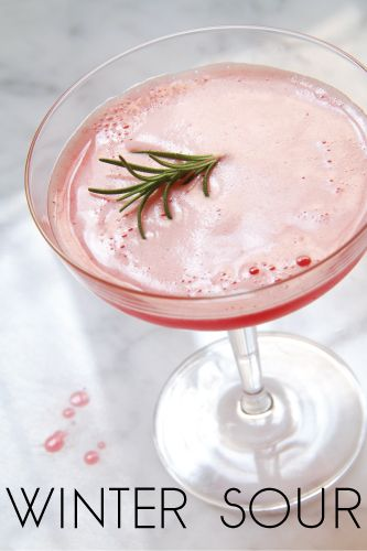Winter Sour: My Foodie Collection of Savory Cocktails - SippitySup