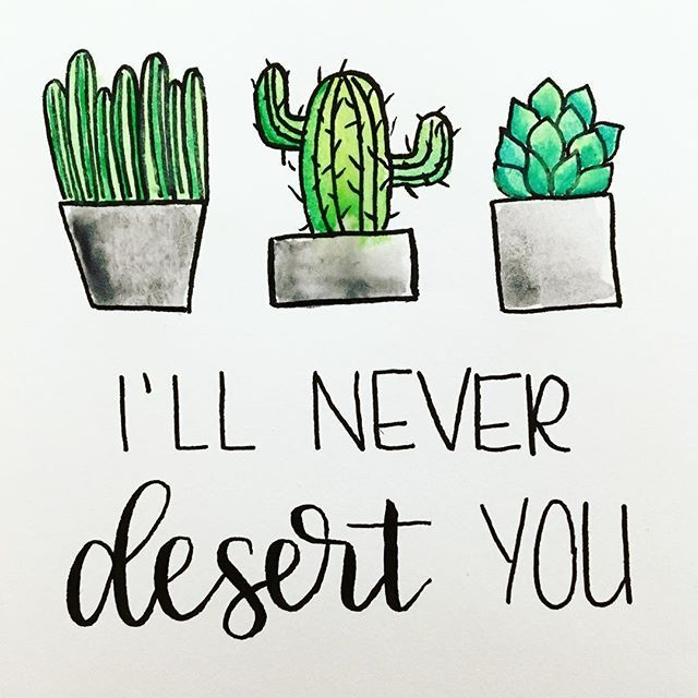 Today is my fiancé and my 5 year dating anniversary. Succulents and puns are definitely the way to my heart!   .  .  #handlettering #lettering #lettered #handmade #desert #succulent #succulents #cactus #plants #floral #flower #flowers #pun #moderncalligraphy #calligraphy #calligrabasics #brushlettering #southernillinois