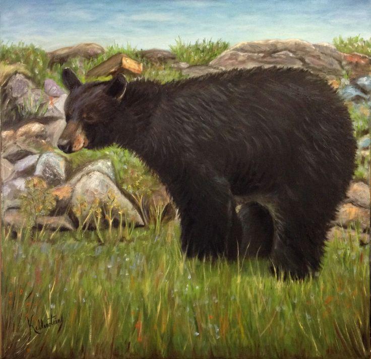 Surpris par un ours noir, sur mon terrain.