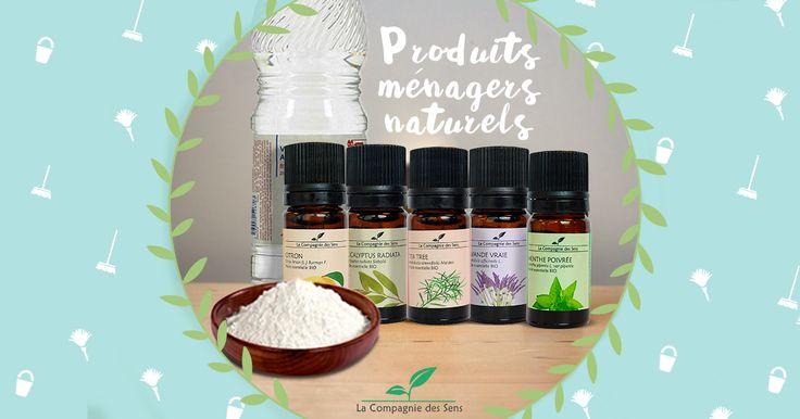 Retrouvez toutes nos recettes pour un ménage complètement naturel ! #huilesessentielles #BIO #menage