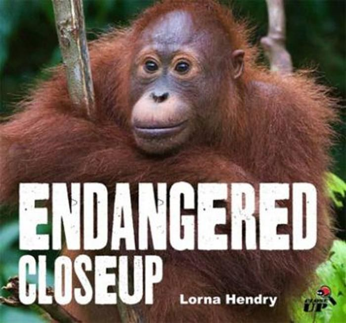 Endangered Close Up - Lorna Hendry