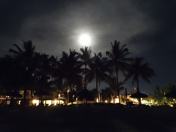 moon, lights and coconut trees, Mauritius