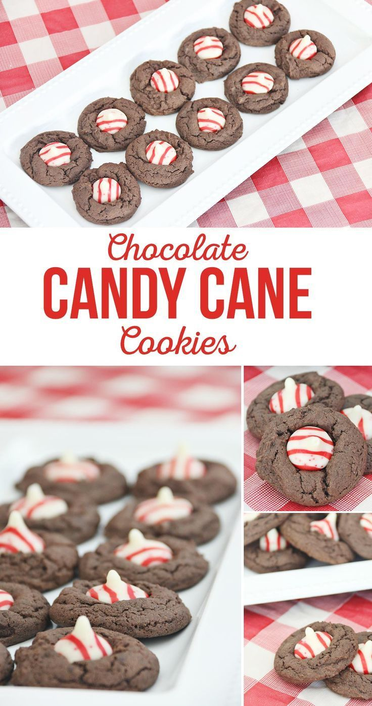 Chocolate Candy Cane Cookies Recipe Me Want Cookies Pinterest