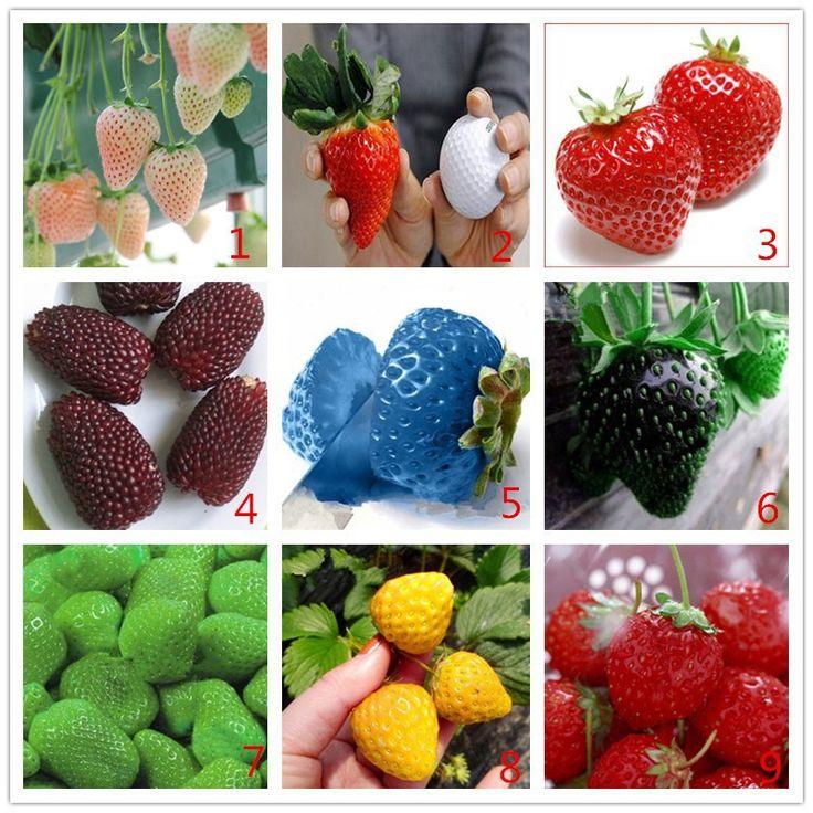 Овощи и фрукты семена, 200 шт./упак. семена Клубники, бонсай растения для дома и сада