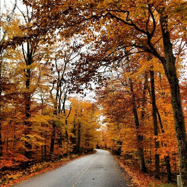 17 Best Images About Fall In Door County On Pinterest