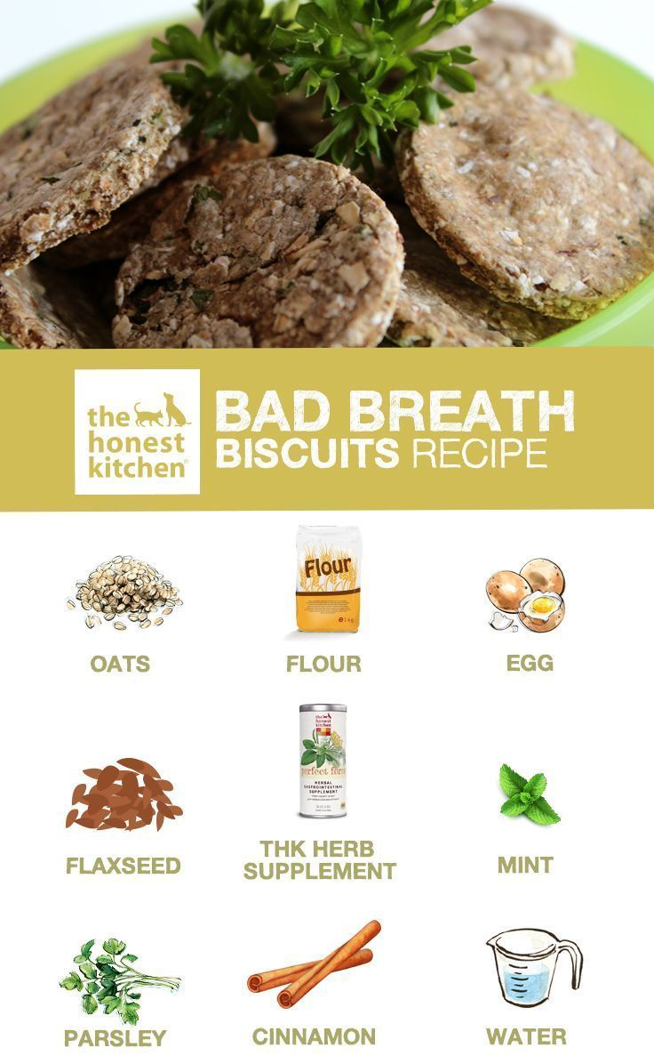 Pet Recipe Bad Breath Biscuits Dog Biscuit Recipes Dog Food