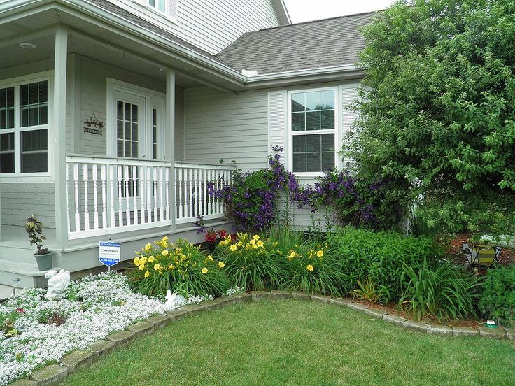 Clematis+in+Bloom.+Front+Flower+Beds.