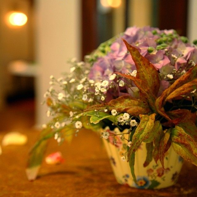 Brighten up your life with flowers :: Photo by Nathania Springs Receptions :: Dandenong Ranges, Victoria, Australia