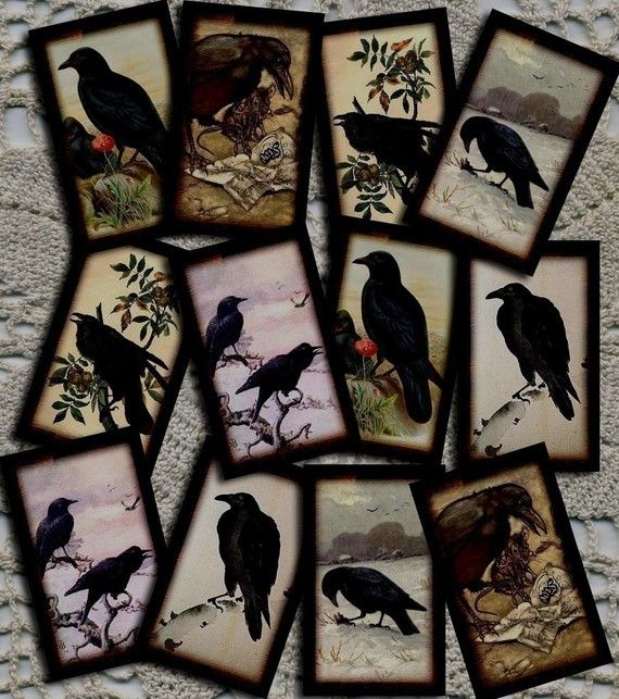 Blackbird FlyBlackbird Fly, Crows Ravens, Animal Birds Ravens Crows, Blackbird Crows, Black Birds, Crows Art, Vintage Art, Primitives Crows, Cards Art