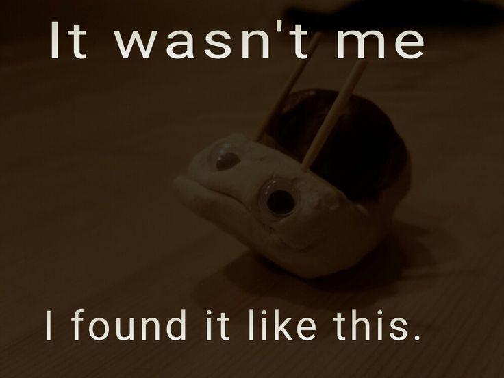 sanctimonious snail didn't do it. #sanctimonious #kids #father #meme