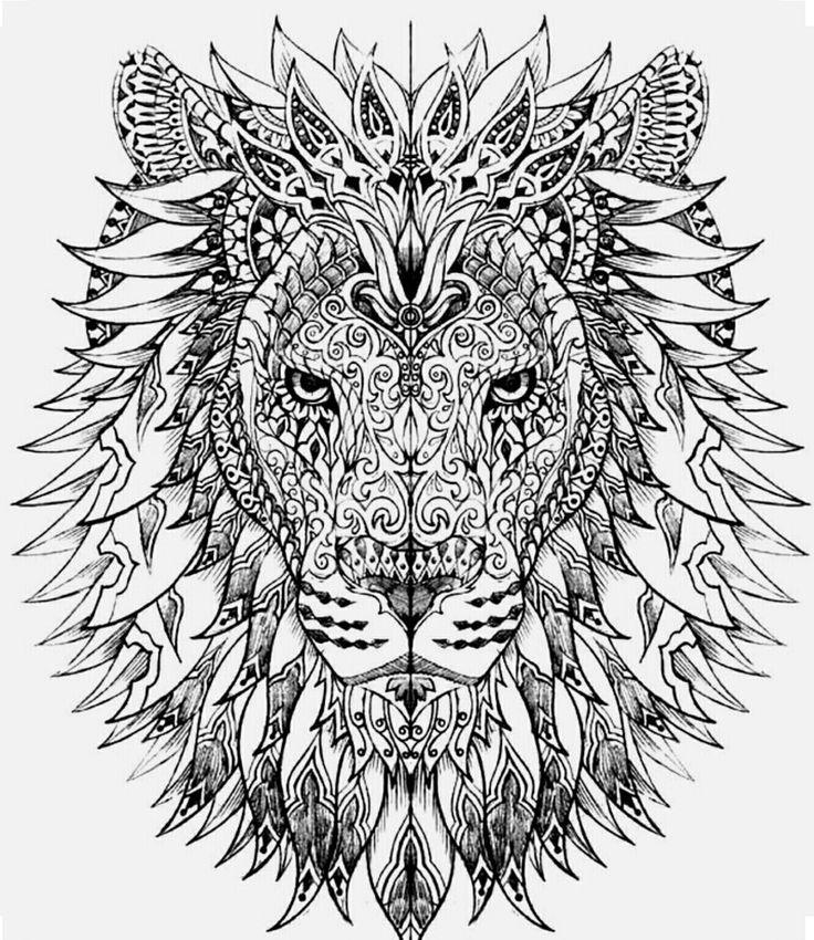 Lion color page
