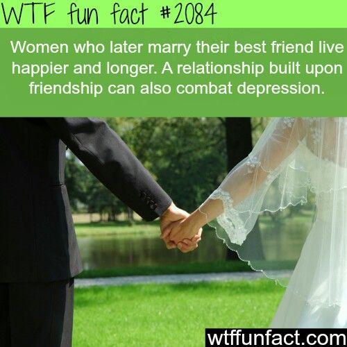 Wtf ea forex