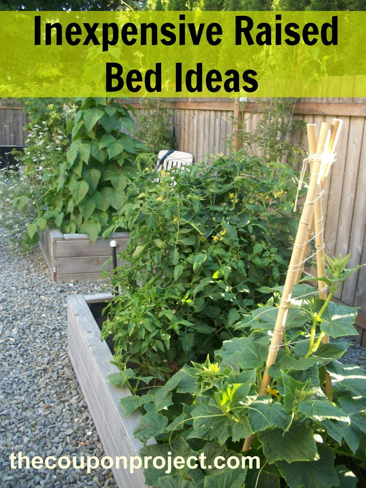 Frugal Gardening Four Inexpensive Raised Bed Ideas
