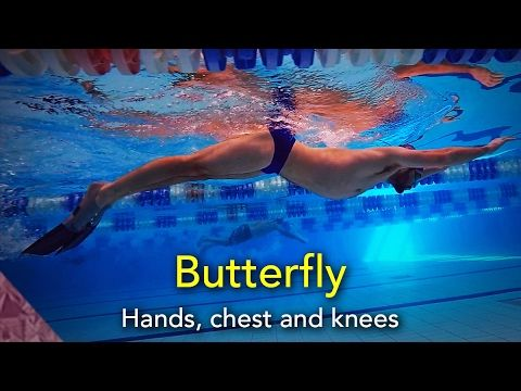 Butterfly swimming technique. How to swim butterfly. Beginner   Swim tutorial - YouTube