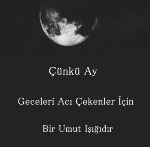 sözler and türkçe resmi