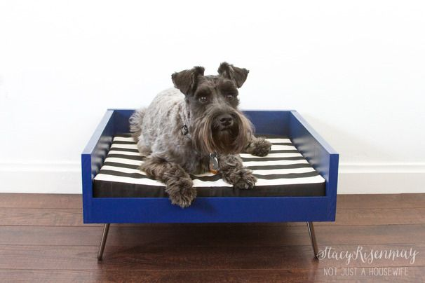 Spoil your favorite fur babies with these 10 awesome pet projects. A roundup of amazing pet beds and feeding stations. Your pet will eat and sleep in style!