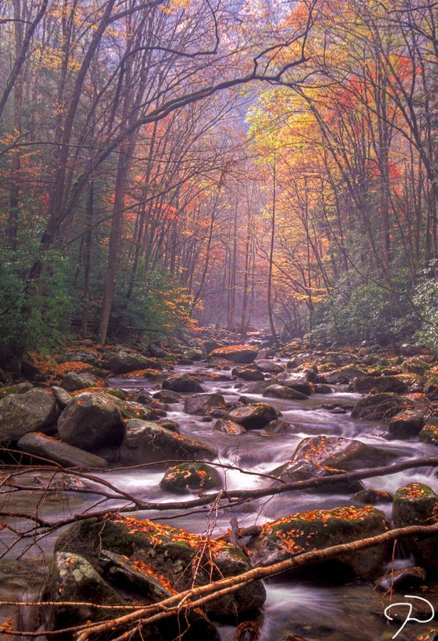 Great Smoky Mountains National Park. Gatlinburg, TN.