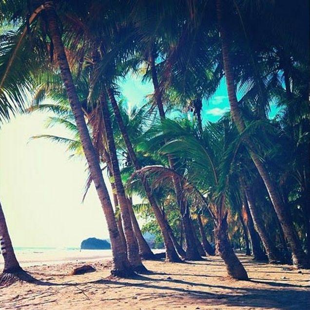 Kim McBean | Costa Rica | Fresh Presse http://freshpresse.com/2014-central-america-costa-rica-yoga/