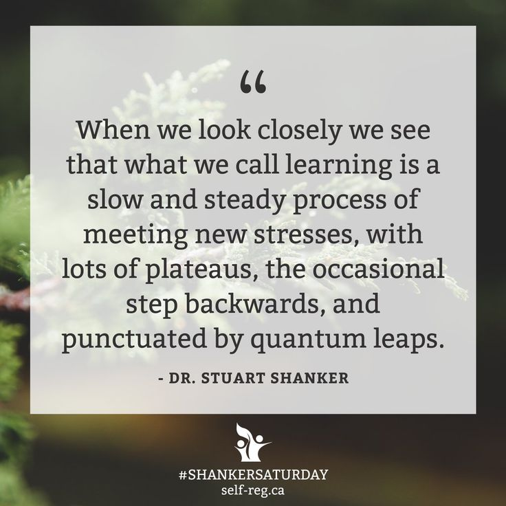 Recognizing that plateaus and steps backwards will happen for kids helps us see with softer eyes and reduces our own stress load.   #ShankerSaturday #SelfReg https://t.co/uLncq6mpfX