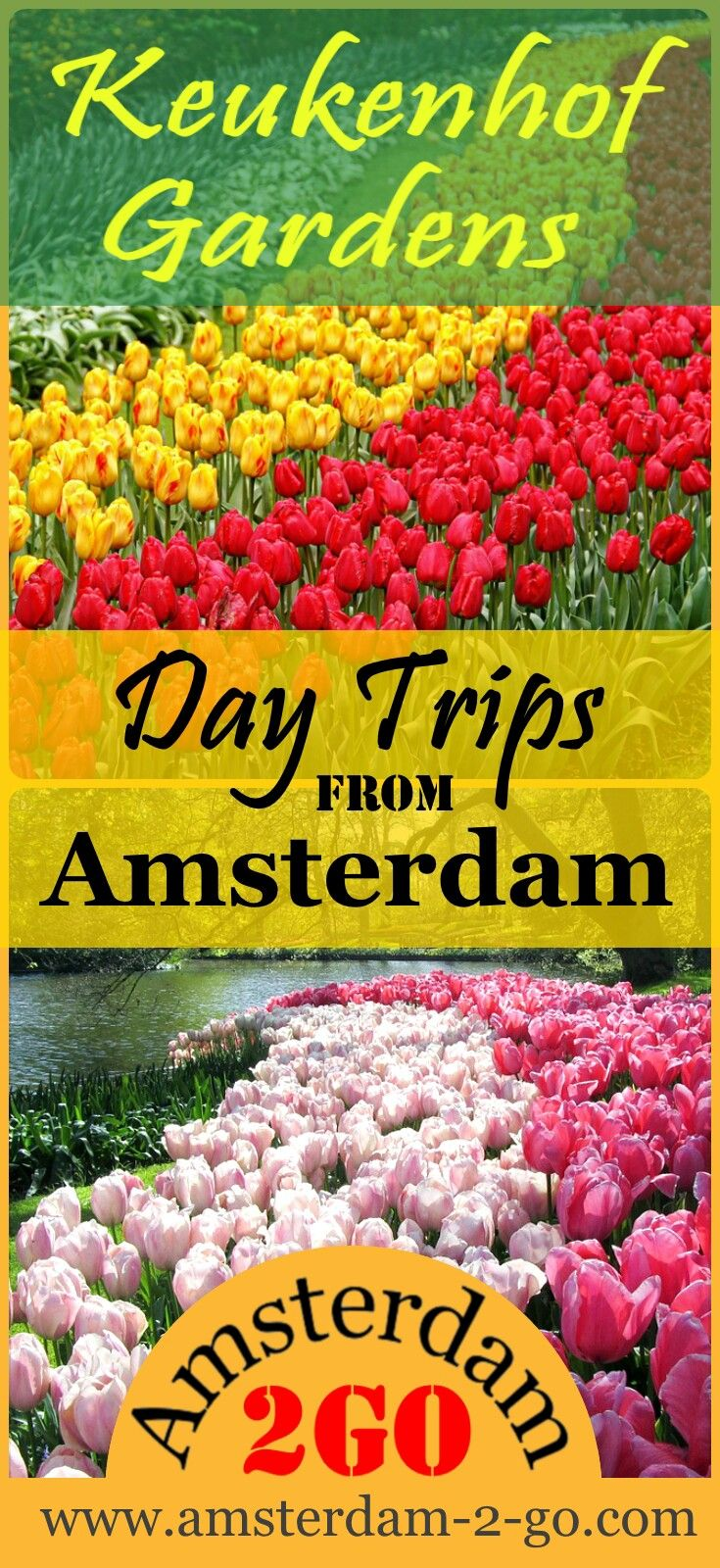 Each year during a limited time of eight weeks, the Keukenhof Gardens and Tulip Fields come alive with seven million spring bulbs, hyacinths, tulips and daffodils.   amsterdam travel, netherlands, red light district, keukenhof gardens, things to do in amsterdam, amsterdam market, amsterdam food, amsterdam tours, tips for visiting amsterdam, tulip blossoms, flower blossoms, what to see around amsterdam