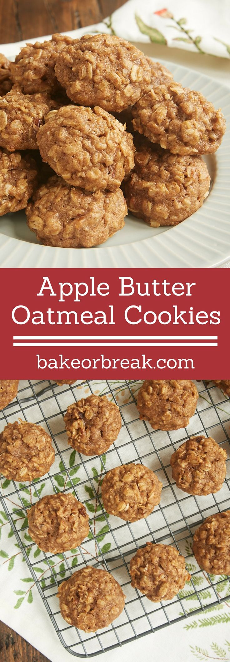 The sweet, spiced flavor of apple butter makes these soft, chewy Apple Butter Oatmeal Cookies wonderfully delicious! - Bake or Break ~ http://www.bakeorbreak.com