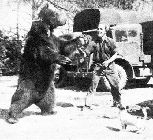 Polish Corporal Wojtek the Soldier Bear