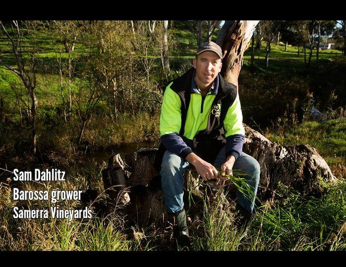 Barossa Environmental Champions - Sam Dahlitz