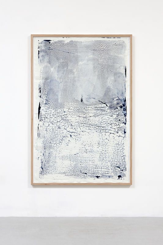 ann cathrin november høibo : untitled 2011