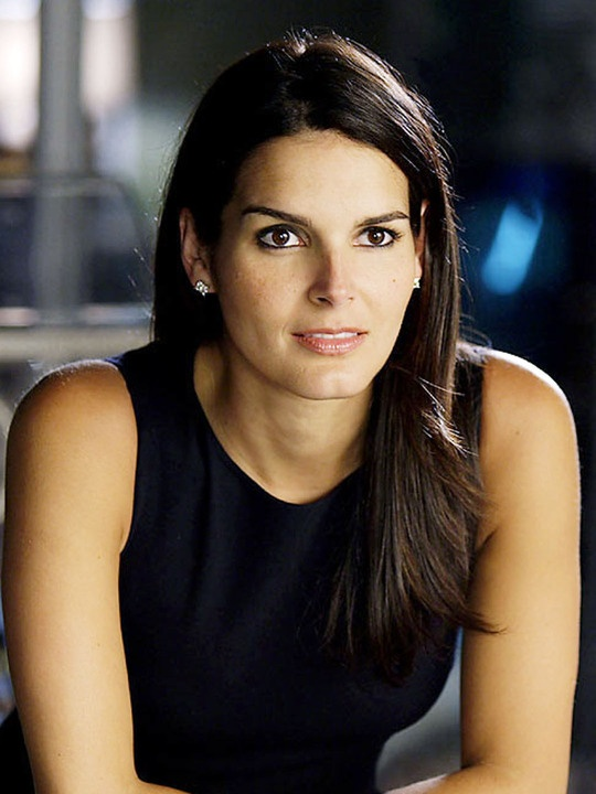 Angie Harmon, the Law & Order days.