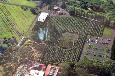 Visit Dole Plantation, Hawaii's Second Most Popular Visitor Attraction: Aerial View of the Dole Plantation Pineapple Garden Maze