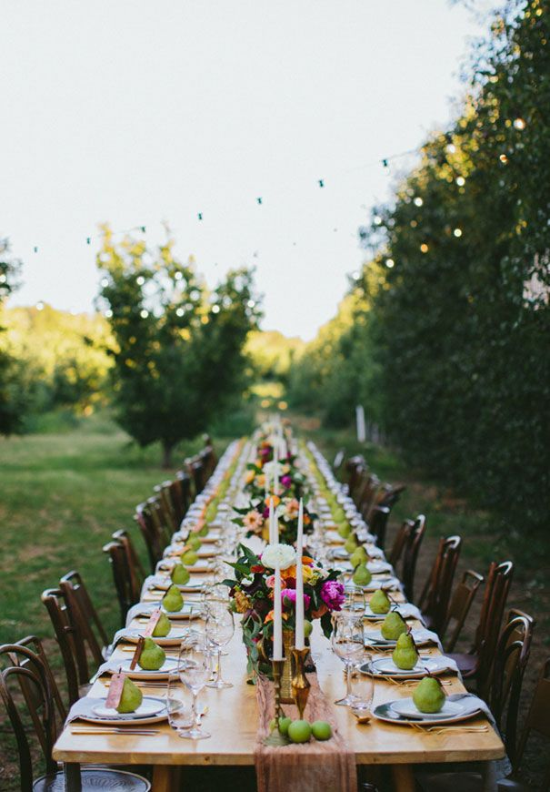 long farm table reception, mismatched chairs, orchard wedding