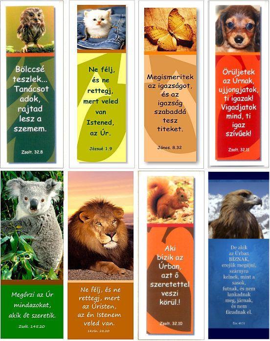 Könyvjelző - 15db állatos - Good News Kft - - Könyvjelzők - AJÁNDÉKTÁRGYAK