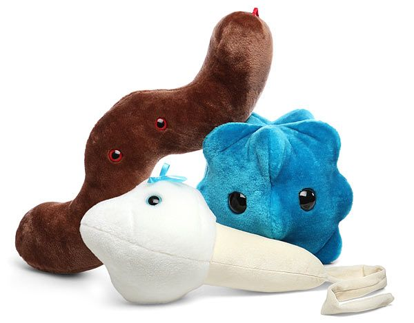 "Keep one of these Gigantic Plush Microbes on your desktop to remind yourself that there is an ""invisible"" universe out there filled with very small things that can do incredible damage to much bigger things."