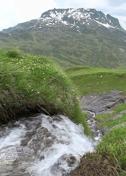50 gifs sobre la naturaleza