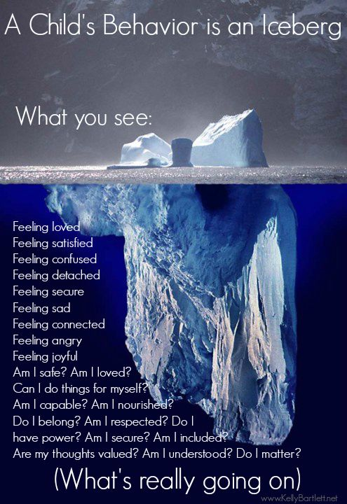 Behavior is an Iceberg