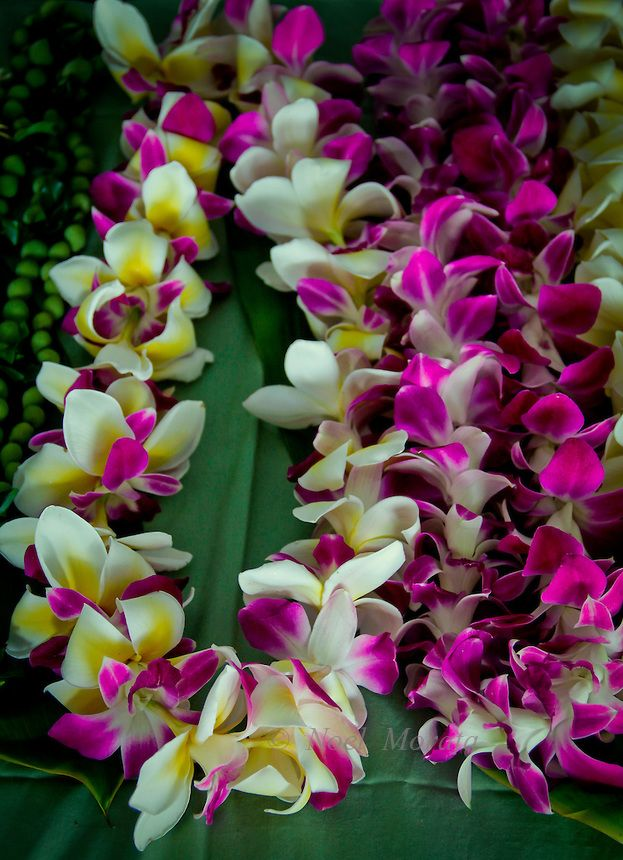 Fresh orchid leis made in Hawaii at the Merri Monarch Festival ...