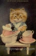 Cats Postcards Misc. - Old Vintage Antique Post Cards | Page 1 of 8