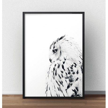 Elegancki plakat przedstawiający białą sowę siedzącą bokiem