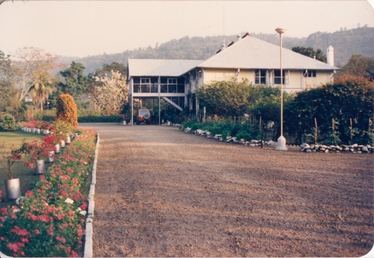Long driveway of Kondoli Tea Estate Burra Bungalow. 1990 Photo courtesy Aseem Dutt.