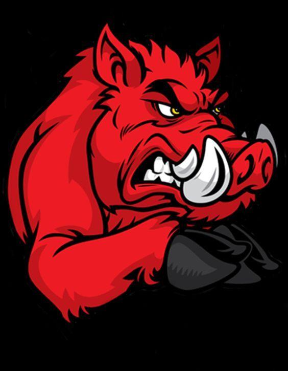 boar: