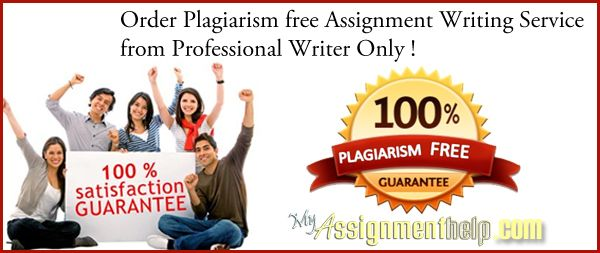 The Main Reasons Why You Need Our Assignment Writing Service