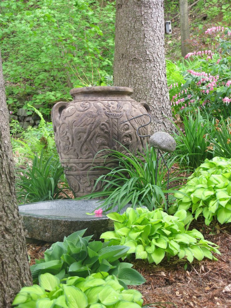 22 Best Rancho View Selections Images On Pinterest Backyard Ideas Garden Ideas And Yard Crashers