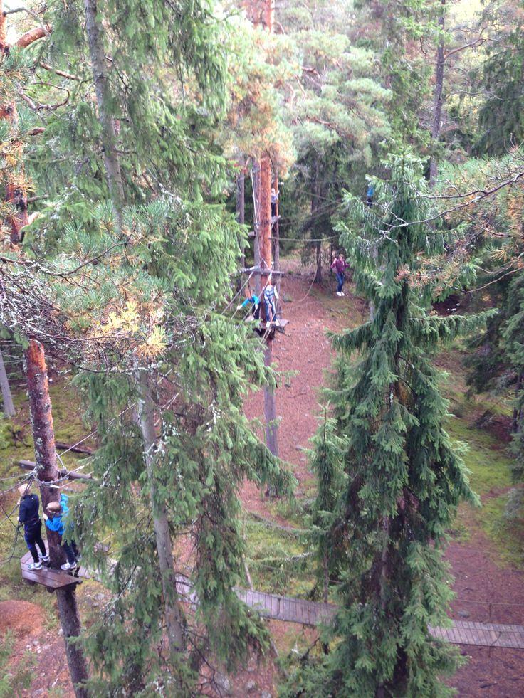 Utmaning på 20 meters höjd