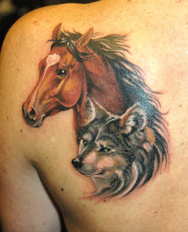 Wolf and horse man tattoo