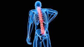 La columna vertebral está dañada en un 80 % de los adultos. La ciencia médica todavía no tiene muy estudiado el asunto...