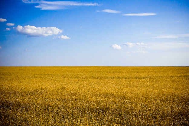 Its natural landscape looks like the Ukrainian flag brought to life.